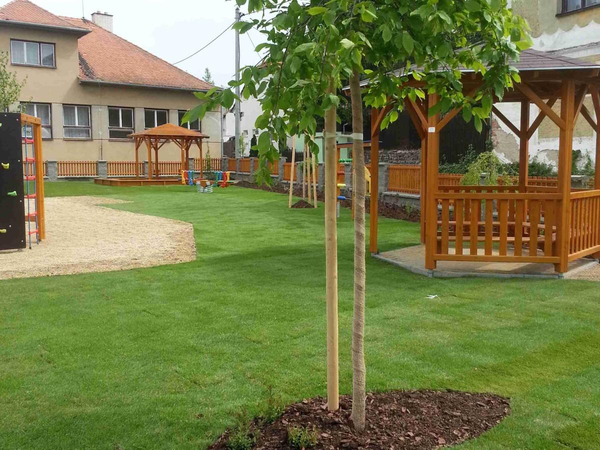 zahradnicke_sluzby_sazeni_stromu